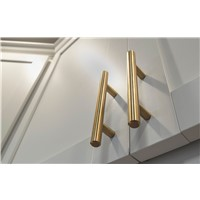 Tempo 256mm Modern Brushed Gold Pull